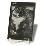 Laser Engraved Pet Photo Plaques