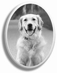 B&W Pet Oval Ceramic Picture