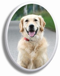 Color Pet Oval Ceramic Picture