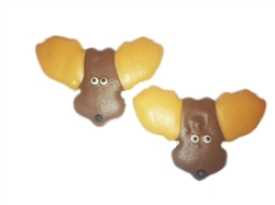 Moose Dog Cookies Treats