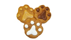 Paw Print Dog Cookies
