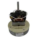 Bissell Motor . Manufacturer's Part Number: 2037039.  Fits Bissell Models: 3130-6  3130-5.