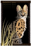 Serval Poster-25% OFF!