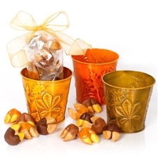 Bring in the autumn with with this warm gift of one dozen fortune cookies. Each chocolate covered fortune cookie contains a message of good luck and thankfulness.