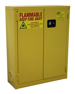 RG20 Wall Mounted Safety Flammable Cabinet