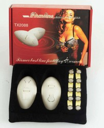 Firmline Electronic Breast Massager