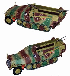 German Sd. Kfz. 251/1 Ausf. D Half-Track in Ambush Camouflage