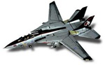 US Navy Grumman F-14A Tomcat Fleet Defense Fighter - VF-154 Black Knights