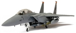 USAF Boeing F-15E Strike Eagle Multi-Role Fighter - 391st Fighter Squadron, 366th Fighter Wing, Mountain Home AFB, Arkansas [Low-Vis Scheme]