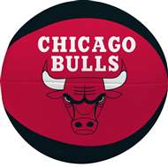 "Chicago Bulls Free Throw 4"" Softee Basketball"