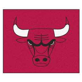 NBA - Chicago Bulls  Tailgater Mat Rug, Carpet, Mats