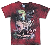 The Mountain T-Rex with Name Tie Dye Youth Tee