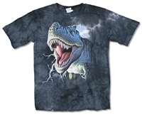 The Mountain T-Rex on Black Tie Dye Youth Tee