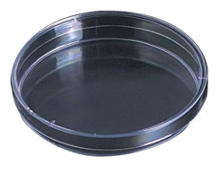 100mm Plastic Petri Dishes Package of  500 Dishes