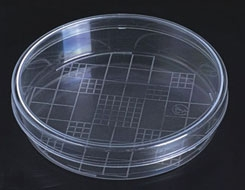 100mm Plastic  Petri Dish with Grid- Pack of 500