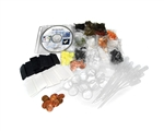 Many Mini Minerals Student Kit