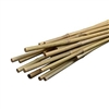 "PS-BambooStakes - Bamboo Stakes 3/8"" x 24"" ( Qty 20 )"
