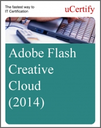 Adobe Flash Creative Cloud eLearning Course