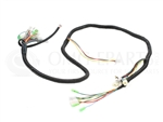 Daymak Gatto Wiring Harness for Gatto (48V Ebike compatible)