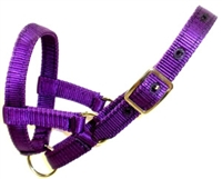 Amish Fixed Ring Alpaca Halters