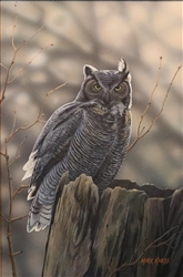 Great Horned Owl By Mark Kness
