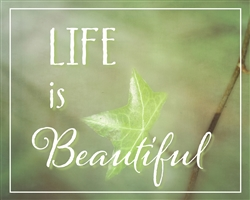 Life is Beautiful by Hal Halli