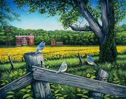 Sunflower Valley (bluebirds) By Robert Andrea