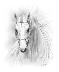 Majesty - Horse by Lois Stanfield