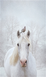 Waiting for Spring - horse by Lois Stanfield