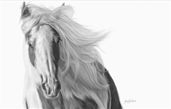 Windswept - Horse by Lois Stanfield