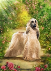 Afghan Hound by Lois Stanfield