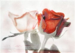 Two Roses - One Soul by Hal Halli