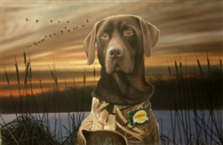 Born to Hunt Chocolate Lab - Clarence Stewart
