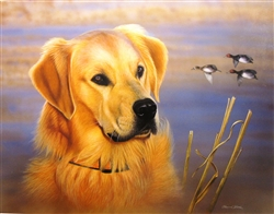 Golden Retreiver and Ducks - Clarence Stewart