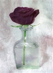 Black Rose in a Clear Vase by Hal Halli