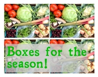 Box Program, Food Lover Box, Rest of the Season until September 28th