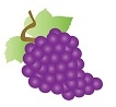 Grapes, Coronation, 3lbs, 14K Farms