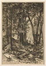 "Mary Nimmo Moran etching ""Interior of a California Forest"""