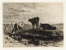 Joseph Foxcroft Cole original etching Three Cows