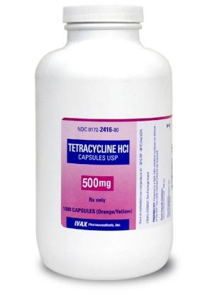 pet antibiotic