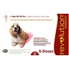 Revolution For Dogs 20-40 lbs, 6 Doses