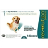 Revolution For Dogs 40-85 lbs, 6 Doses