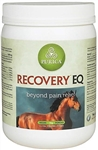 Recovery EQ Powder, 2.2 lbs (1 Kg, 40 Days)