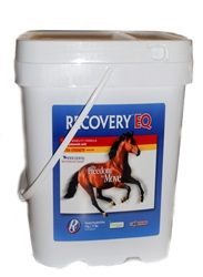 Recovery EQ with Hyaluronic Acid, 11 lbs (5 Kg)