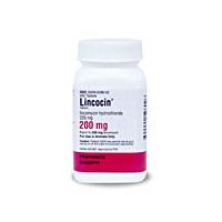 Lincomycin Without Prescription