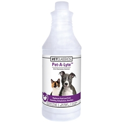 Vet Classics Pet-A-Lyte Oral Electrolyte Solution, 32 oz
