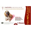 Revolution For Dogs 21-40 lbs, 3 Doses