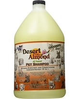 Desert Almond Shampoo, gallon