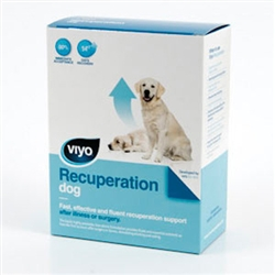 VIYO Recuperation Dog, 3 X 150 ml