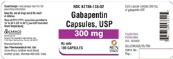 gabapentin for cat seizures